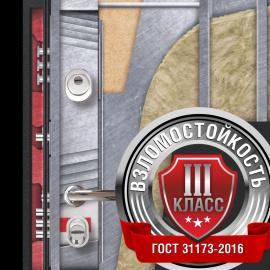 Конструкция двери Люкс ПРО Аргус